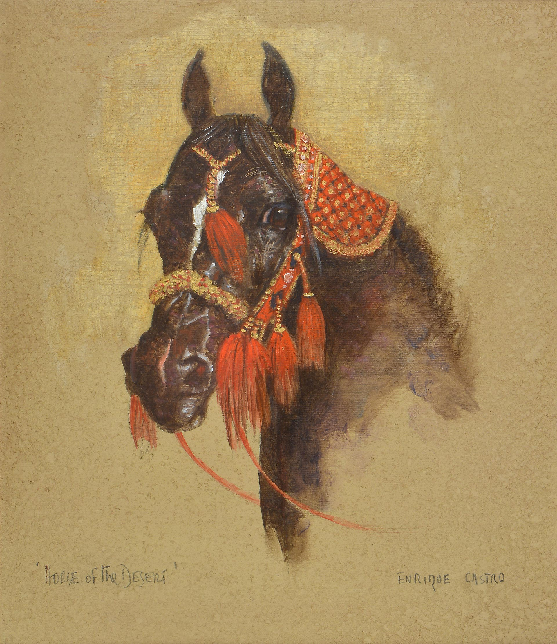 Black Head of Arab Horse